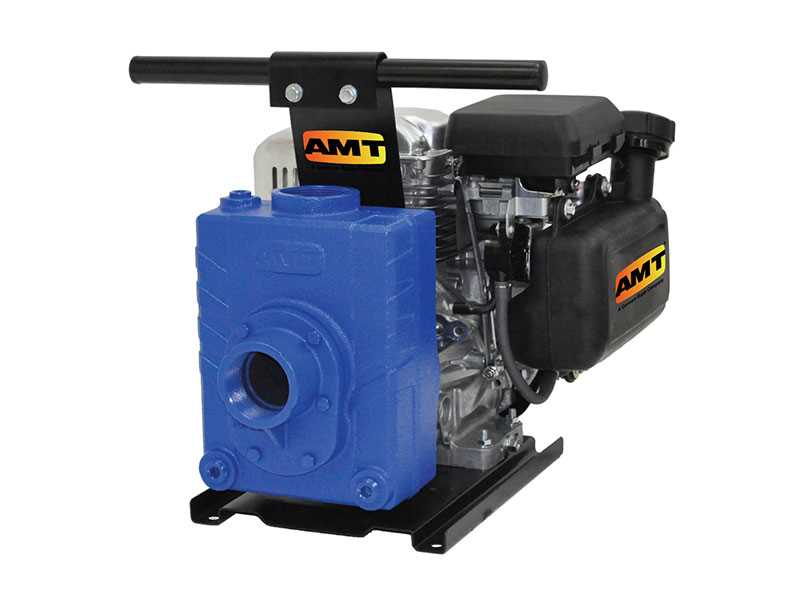 Teel Engine Driven Cast Iron Pumps