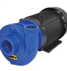 Teel Heavy Duty Pumps