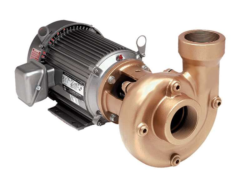 Teel Heavy Duty Straight Centrifugal Pumps