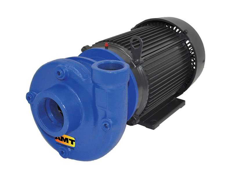 Teel Heavy Duty Pumps